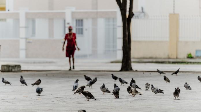 FORTALEZA, CE, BRASIL, 14-02-2021: Praça João Gentil estava vazia na tarde deste domingo de carnaval. Apenas AMC e algumas pessoas em situação de rua transitavam na praça além dos pombos. (Foto:Júlio Caesar / O Povo)