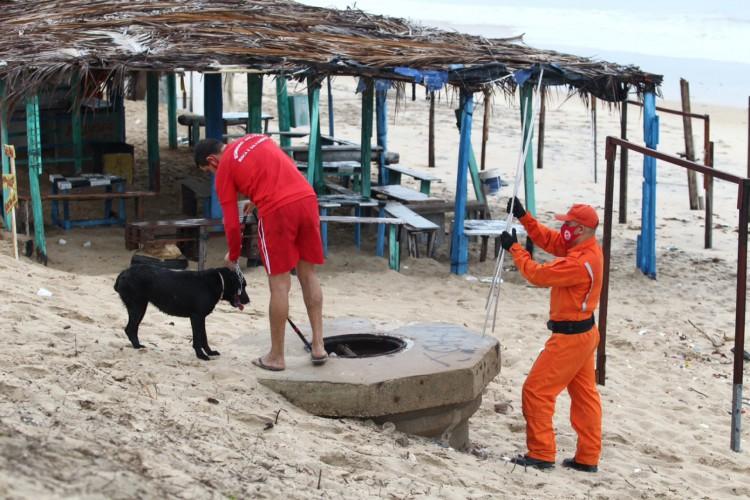 BOMBEIROS utilizaram cães farejadores nas buscas de um corpo  (Foto: FABIO LIMA)