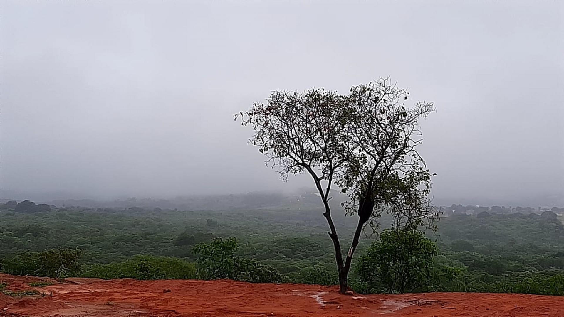 De acordo com relatório, chuva banhou Abaiara, na região do Cariri.