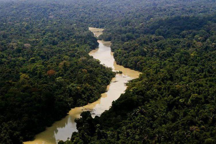 Salles e Araújo discutem meio ambiente com representante dos EUA (Foto: )