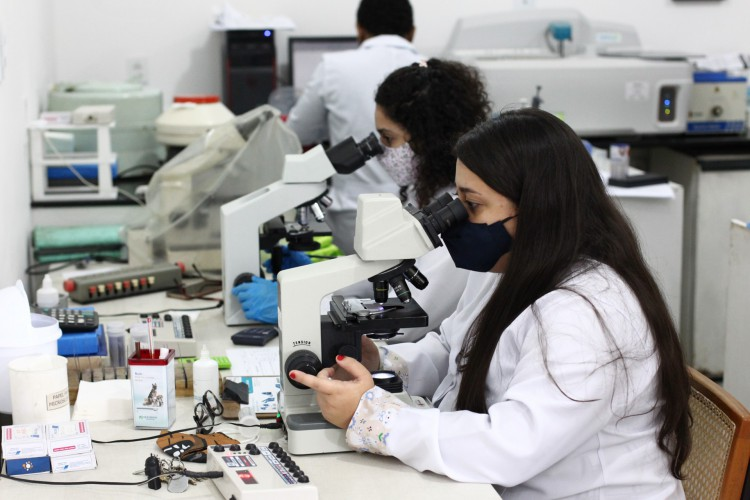 Alunas no laboratório do curso de veterinária da UECE, campus Itaperi.   (Foto: FABIO LIMA)