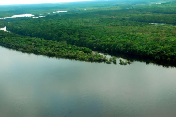 MMA assina acordo de adoção de parque localizado no Amazonas (Foto: )