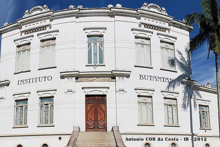 Instituto Butantan (Foto: Antonio COR da Costa/Instituto Butantan)