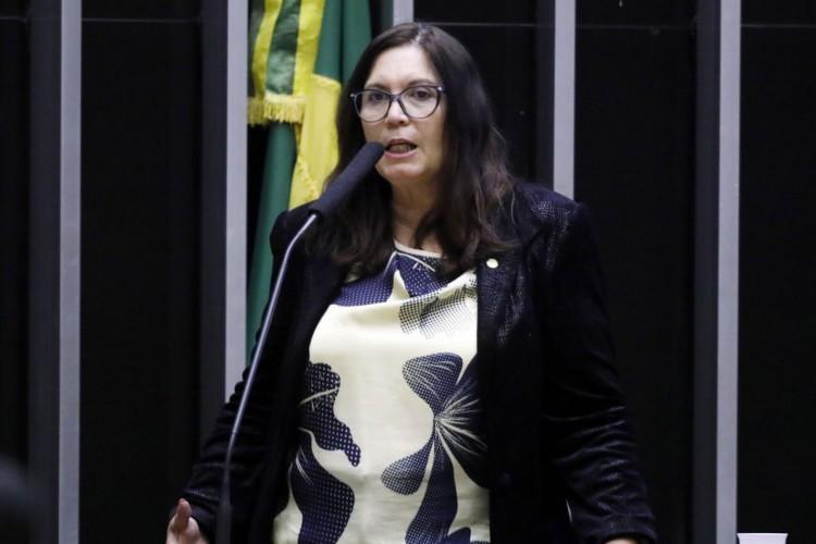 Bia Kicis é eleita presidente da CCJ da Câmara dos Deputados (Foto: )