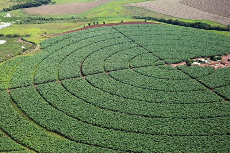 Reservatórios de pivôs centrais de irrigação em Itaí (SP) (Foto: Raylton Alves/Agência Ana)