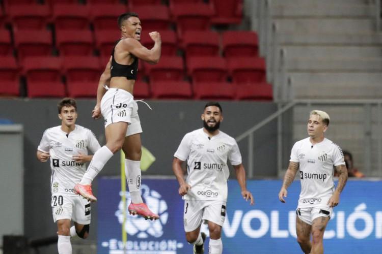 Santos garante vaga na fase de grupos da Libertadores da América (Foto: )