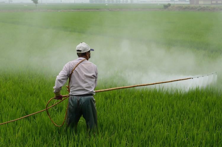Europa adota regras internas para pesticidas que não exige para exportação a outros países