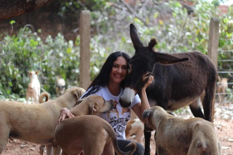 Além de cães e gatos, a ativista Jacqueline Gouveia também incentiva a adoção de outros animais, como os jumentos.