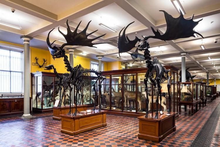 Interior do Museu Nacional da Irlanda, onde ficam guardadas preciosidades do País europeu (Foto: Divulgação)