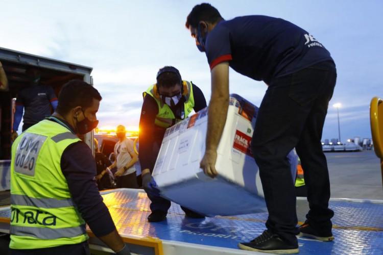 Esse é o 17º lote de vacinas que chega ao Ceará. (Foto: Divulgação/Governo do Ceará/Tatiana Fortes)