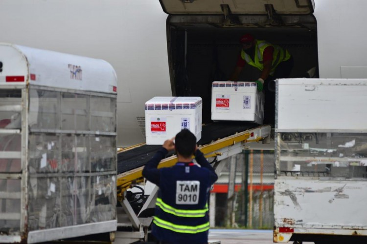 Carregamento chegou nesta segunda ao Estado (Foto: Thiara Montefusco/Governo do Ceará)