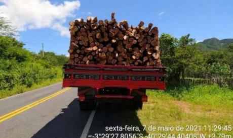 Caminhão com 15 m3 de madeira foi apreendido durante ação da PM contra extração ilegal de madeira em Massapê