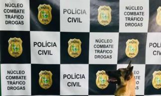Cachorro farejou droga e ajudou a Polícia a apreender mais de quatro quilos de cocaína