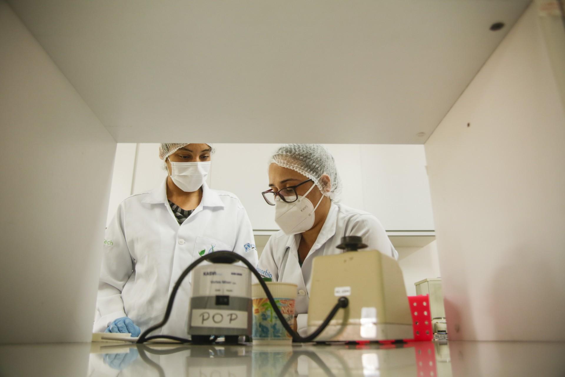 Pesquisadores da Uece desenvolvem pesquisa na busca por uma vacina contra a Covid-19