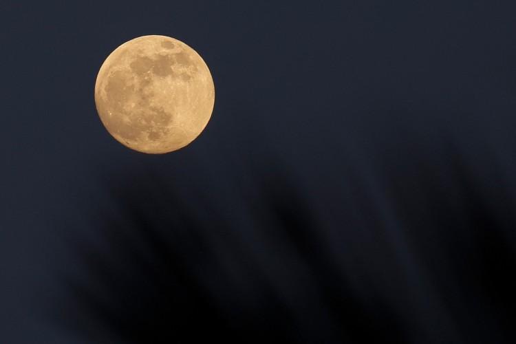Super Lua, surgindo atrás das árvores sobre o Mar Mediterrâneo vista de Roca Llisa na ilha espanhola de Ibiza durante um eclipse lunar total visível na Ásia e nas Américas (Foto:  David GANNON / AFP)