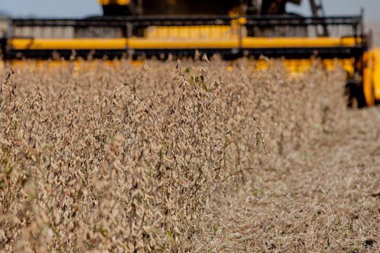 Produção agrícola foi impulsionadora do resultado do PIB brasileiro (Foto: Camila Domingues / Agência Brasil)