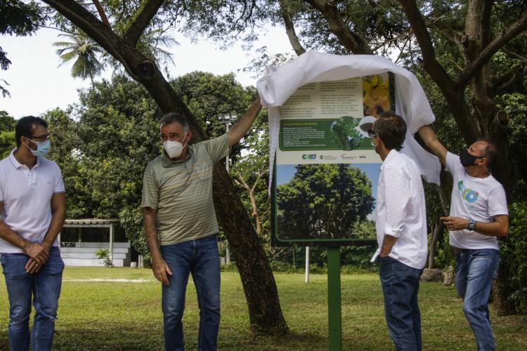 FORTALEZA, CE, BRASIL, 05.06.2021: Dia do Meio Ambiente. Secretário do Meio Ambiente, Arthur Bruno inaugura Alameda Pau Brasil no Parque Adahil Barreto (Thais Mesquita/OPOVO) (Foto: Thais Mesquita)