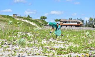 Ações ambientais promovidas no Ceará reforçam a importância da preservação do maior ecossistema terrestre
