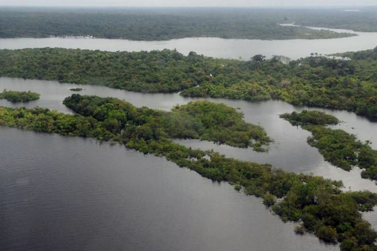 Jovens indígenas ganharão prêmios pela preservação de rios e oceanos (Foto: Valter campanato; Agencia Brasil)