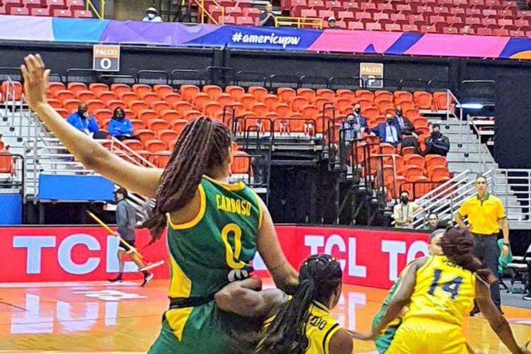 Basquete: seleção feminina vence segunda partida na Copa América (Foto: )