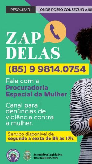 Zap Delas é um canal de denúncia sobre casos de violência contra as mulheres (Foto: DIVULGAÇÃO )