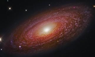 Veja o horóscopo de todos os signos do Zodíaco para esta quarta-feira, 16 de junho (16/06)