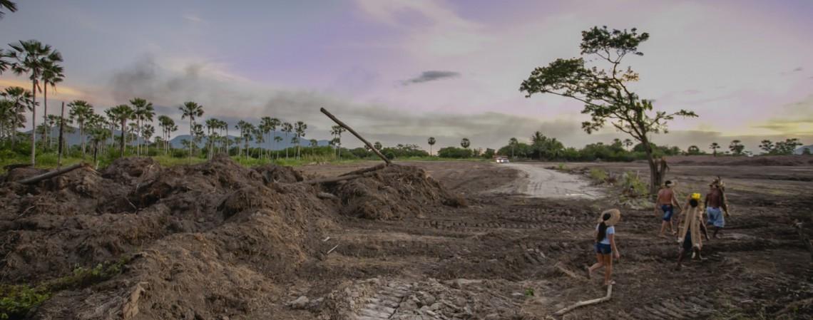 CAUCAIA, CE, BRASIL, 15-06.2021: Desmatamento em área da tribo Tapeba, em Caucaia, no bairro Campo Grande (Foto: AURÉLIO ALVES/ O POVO)