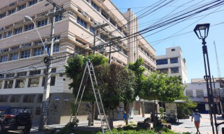 Árvores foram podadas no Centro de Fortaleza