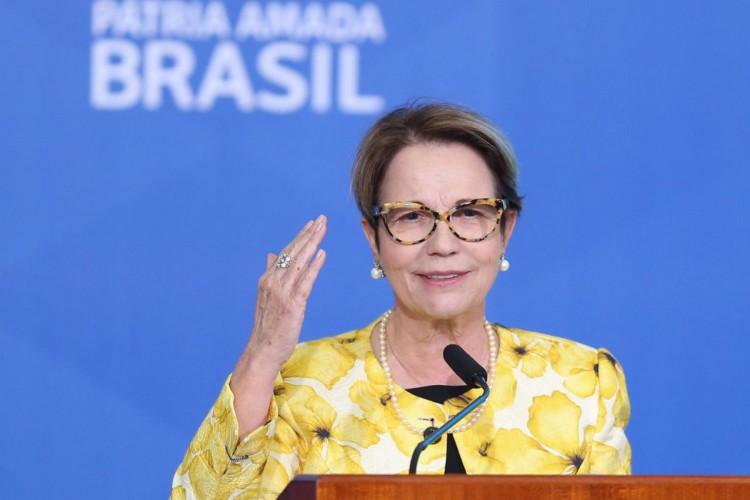 A ministra da Agricultura, Pecuária e Abastecimento, Tereza Cristina , durante  lançamento  do Plano Safra 2021/22 no Palácio do Planalto. (Foto: Fabio Rodrigues Pozzebom/Agência Brasil)