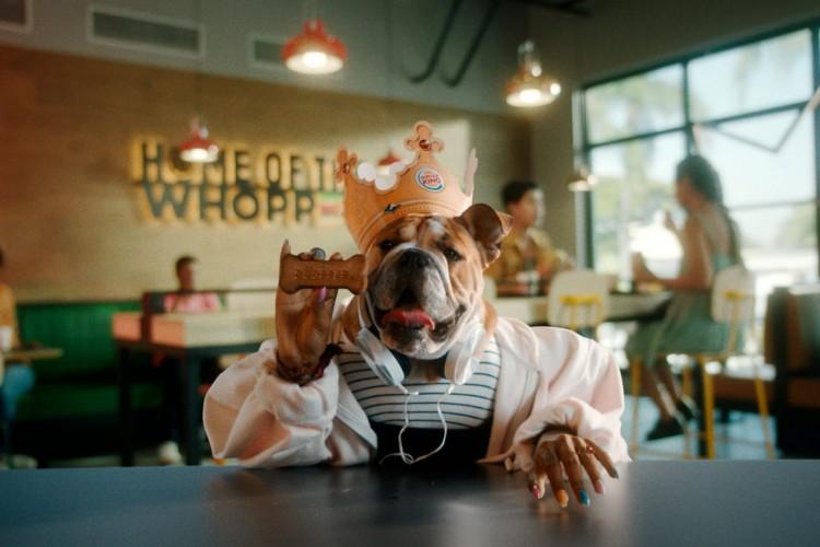 Campanha deve contar com cães no lugar de humanos nas lanchonetes da marca (Foto: Arquivo Burguer King)