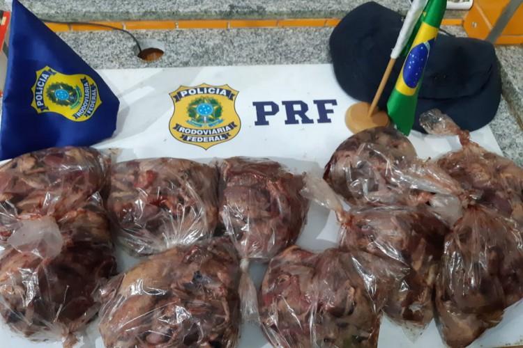 Aves foram encontradas dentro de embalagens e seriam vendidas. (Foto: PRF)