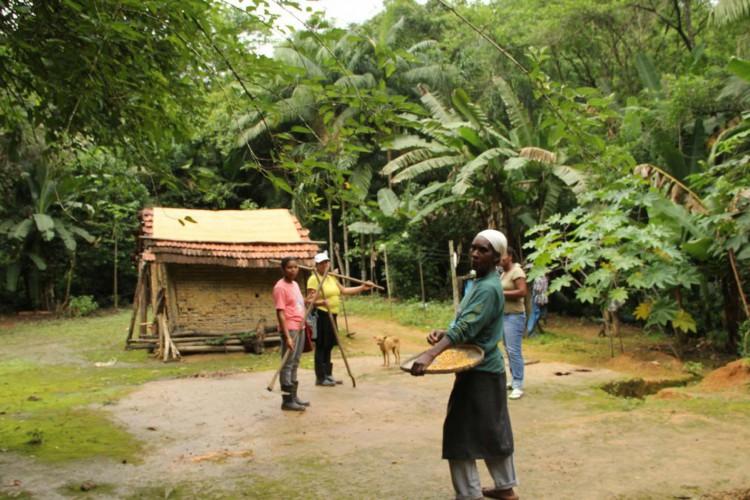 O sistema agrícola tradicional das comunidades quilombolas do Vale do Ribeira, no sudeste paulista (Foto: Gilvani Scatolin/ISA/Direitos Reservados)
