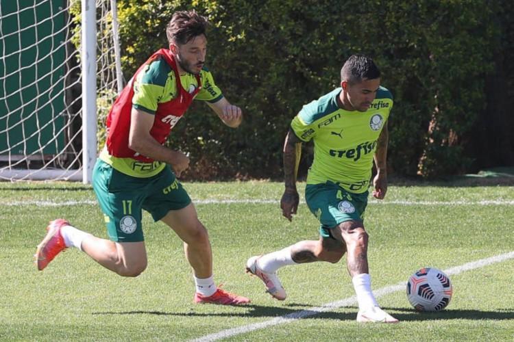 Palmeiras realizou o último treino preparatório antes de enfrentar a Universidad Católica na Libertadores (Foto: Cesar Greco / SE Palmeiras)