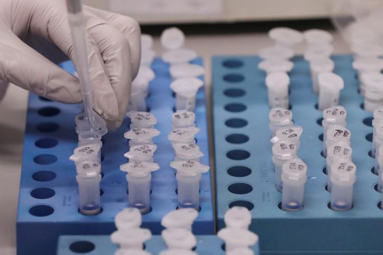 Coronavirus (Foto: REUTERS/Yves Herman)