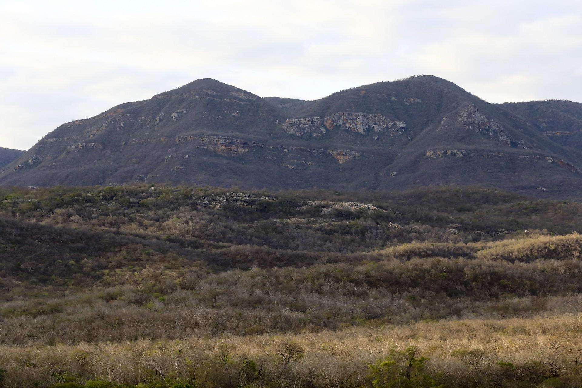 (Foto: O POVO)SANTA QUITÉRIA, CE, BRASIL, 20-07-2015: Vista da vegetação seca e serra de Santa Quitéria. Mina de urânio (minério) em Santa Quitéria. (Foto: Fábio Lima/O POVO)
