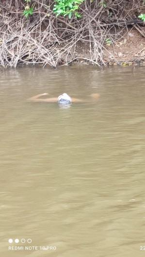 Corpo de homem ainda não identificado foi encontrado em açude num distrito de Maranguape (Foto: Foto: O POVO/via whatsapp)
