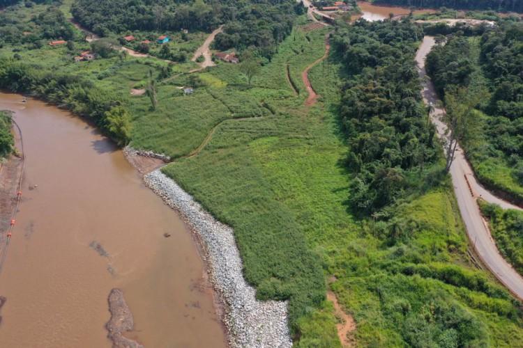 Reflorestamento em Brumadinho usa técnicas inéditas, mas só atingiu 1% (Foto: )