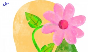 Hortas, frutas e flores