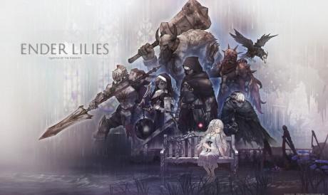 O enredo do jogo acontece em um reino destruído, chamado Land's Fall