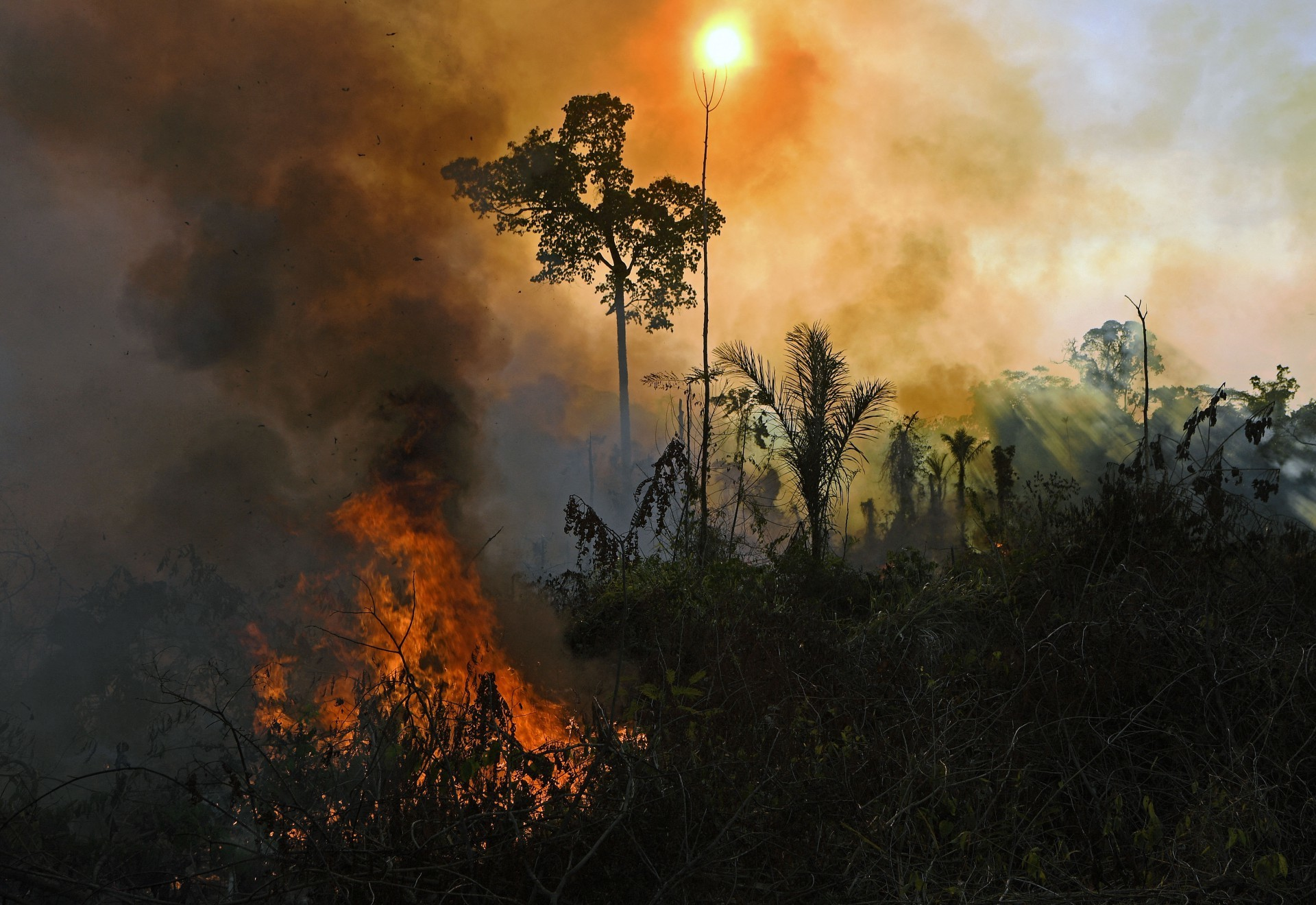 (ARQUIVOS) Neste arquivo, foto tirada em 15 de agosto de 2020, fumaça e chamas se erguem de um incêndio ilegalmente aceso na reserva da floresta amazônica, ao sul de Novo Progresso, no estado do Pará, Brasil. - O número de incêndios na Amazônia brasileira com o início da temporada de queimadas em agosto caiu ligeiramente em relação a 2020, mas permaneceu perto dos máximos de quase uma década vistos pelo presidente Jair Bolsonaro, novos dados mostraram em 1 de setembro de 2021. (Foto por CARL DE SOUZA / AFP) (Foto: CARL DE SOUZA / AFP)
