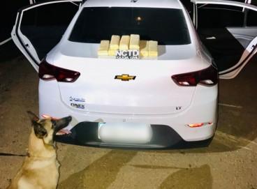 As drogas foram encontradas em veículo interceptado em rodovia estadual