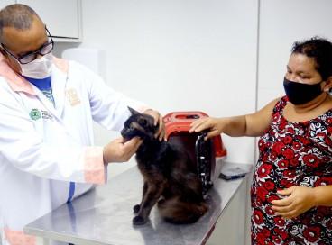 Atuam no Vetmóvel médicos veterinários, clínicos gerais, cirurgiões e anestesista