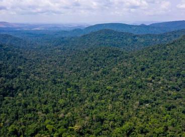 O vice-presidente da República, Hamilton Mourão, e os chefes de missões diplomáticas à Amazônia Oriental, fazem sobrevoo para a  sobre a Floresta Nacional de Carajás e visita à mineradora Vale.