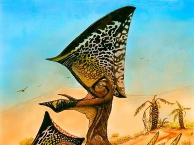 O pterossauro Caiuajara pertence à família Tapejaridae, que tem representantes fósseis na Bacia do Araripe