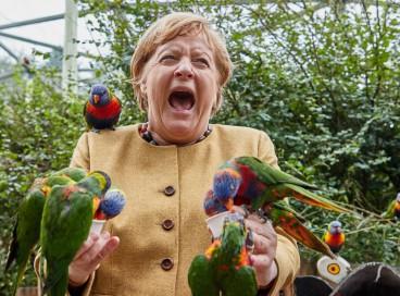 A chanceler alemã Angela Merkel reage ao alimentar lorikeets no Bird Park em Marlow, norte da Alemanha, em 23 de setembro de 2021. (Foto de Georg Wendt / dpa / AFP) / Alemanha OUT