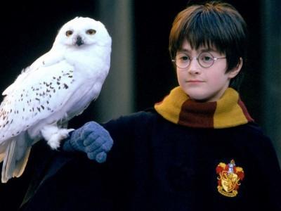 O filme 'Harry Potter e a Pedra Filosofal' completa 20 anos em 2021