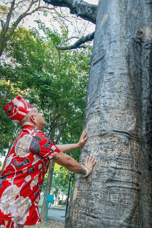 Babá Léo de Oxum sobre os significados e tradições que envolve a arvore Baobá.(Foto: FCO FONTENELE)