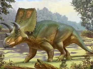 Os sierraceratops eram quadrúpedes herbívoros que comiam vegetação rasteira. Eles existiram no começo do fim do período cretáceo, segundo pesquisadores