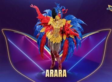 Hoje, 19 de outubro (19/10) acontece a final do The Masked Singer Brasil. Jurados tentam descobrir quem é a Arara. Vote na nossa enquete e veja os palpites