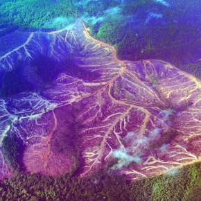 COP26: a Conferência da ONU para evitar o fim do mundo?